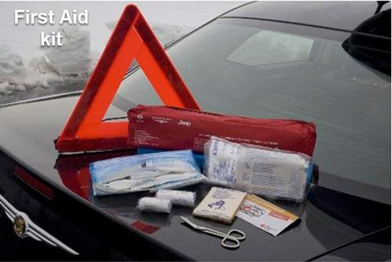 Picture of Reneged -First Aid kit