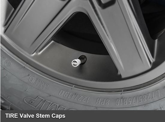Picture of Reneged-TIRE Valve Stem Caps